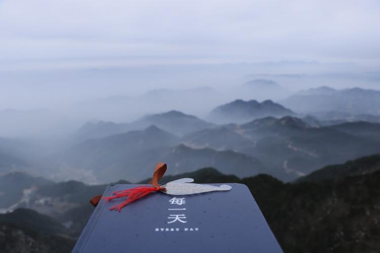 青春无悔一缕茶-海南省·三亚市·吉阳区-朋友圈-可以一起徒步、一起看风景……